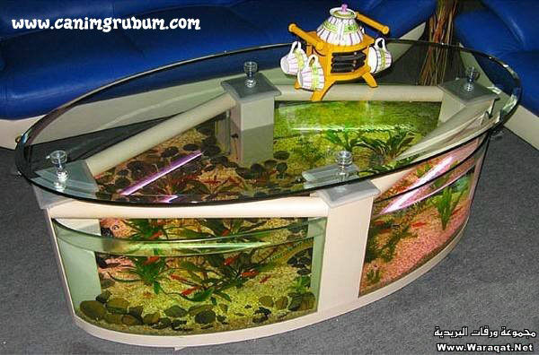 صور احواض السمك على شكل طاولات  A7oad-fish_11