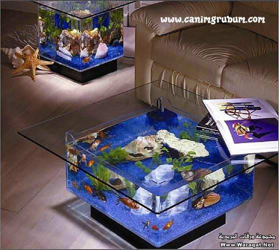 صور احواض السمك على شكل طاولات  A7oad-fish_5