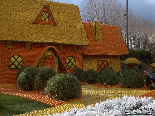 مهرجان البرتقال والليمون في هولندا  Orange-holland_1