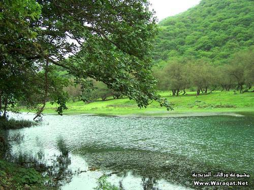 طوف وشوف فى اليمن الشقيق Saqatre1