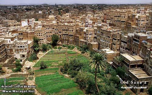 طوف وشوف فى اليمن الشقيق San3a1