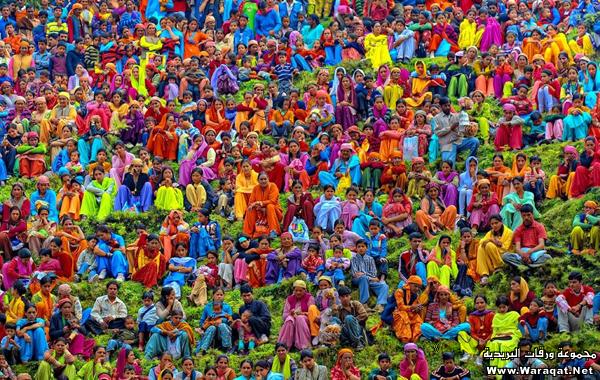 صور عيد الألوان في الهند 3ed-color_11