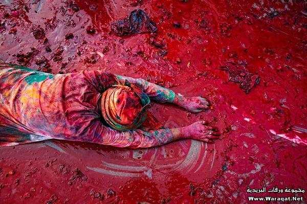 صور عيد الألوان في الهند 3ed-color_5
