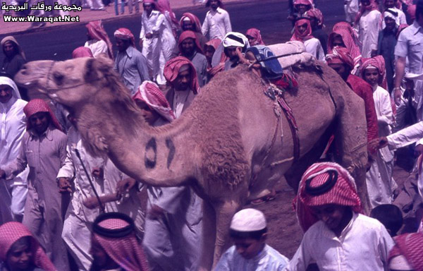 مصور امريكي يزور الرياض في السبعينات الميلادية ويلتقط هذه الصور Reyadh_zmaan31
