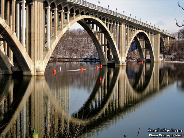 صور أجمل 18 جسر حول العالم  Gsor_nice11