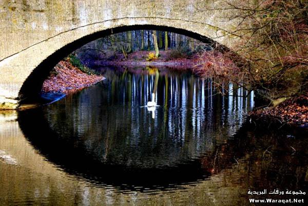 صور أجمل 18 جسر حول العالم  Gsor_nice13