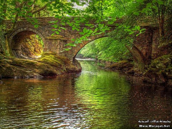 صور أجمل 18 جسر حول العالم  Gsor_nice3