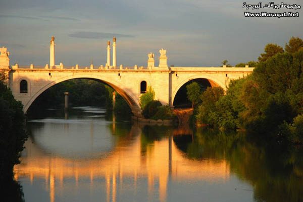 صور أجمل 18 جسر حول العالم  Gsor_nice4