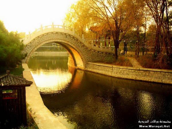 صور أجمل 18 جسر حول العالم  Gsor_nice5