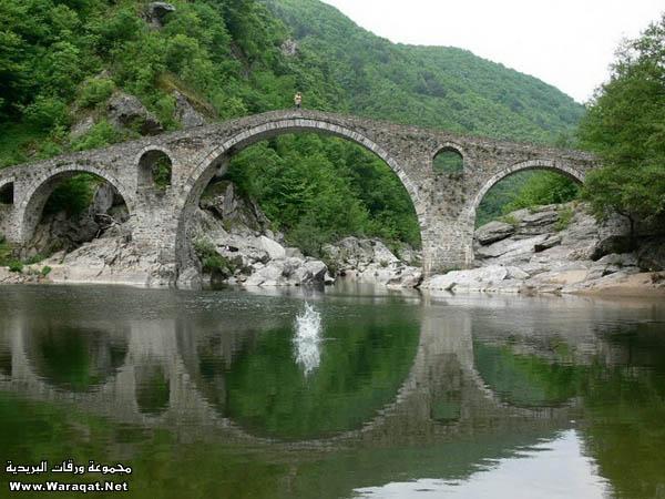صور أجمل 18 جسر حول العالم  Gsor_nice8