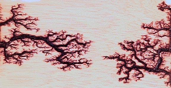 Fractal Lichtenberg Figure Wood Burning with Electricity Licht%202