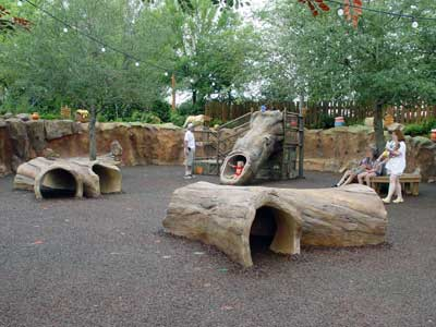 visite du Disney world magic Kingdom DSC00010