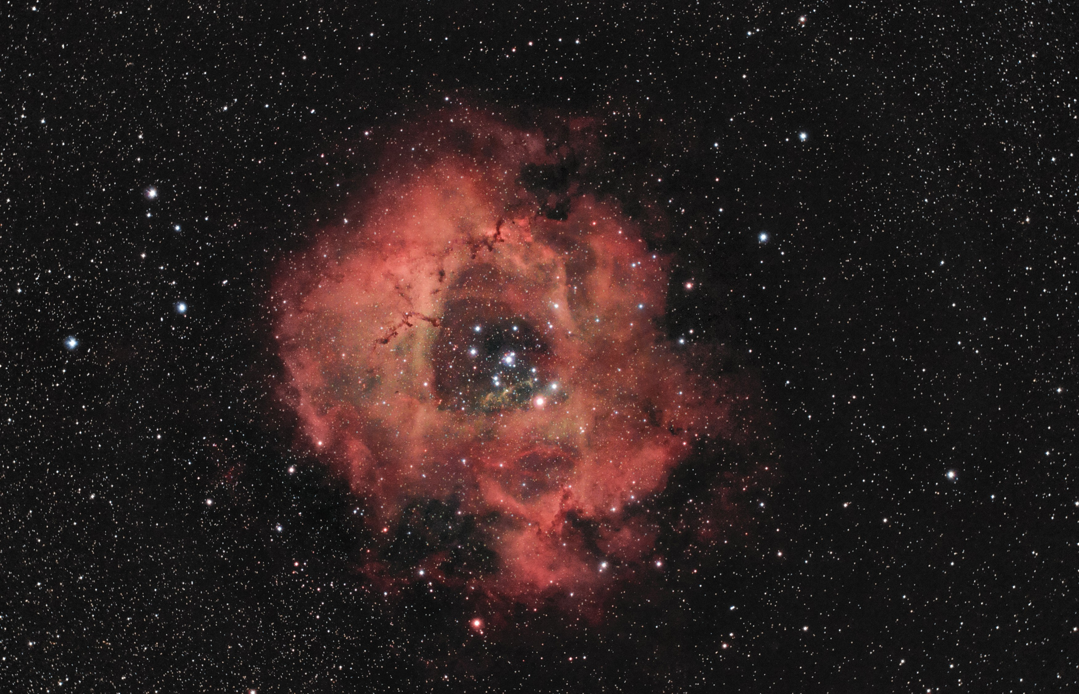 Rosette, l'apero ambitieux  25130-1456856031