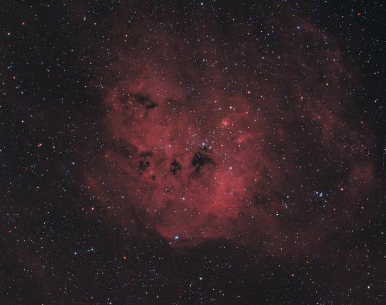 IC410 Nébuleuse du Têtard 12058-1456905287