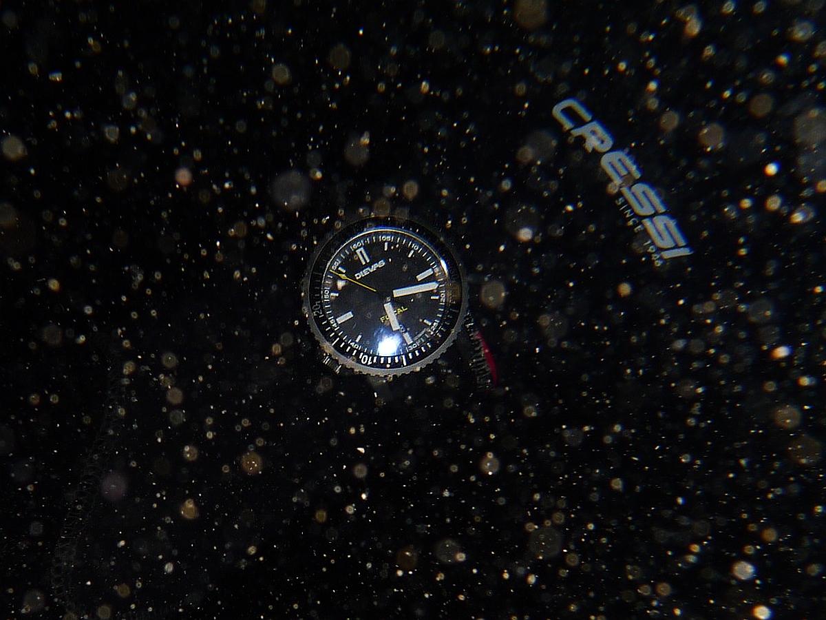 Night Dive: Woodman Point 18-06-2013 - Dievas Focal Dievas%20Focal%20Woodman%20Point%2018-06-2013%201