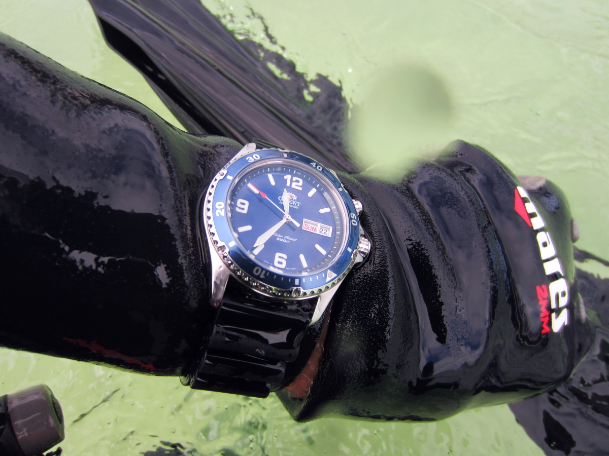 Sunday Dive: 21-04-2013 Rockingham - Orient Mako Orient%20Mako%20Rockingham%2021-04-2013.jpg%20%288%29