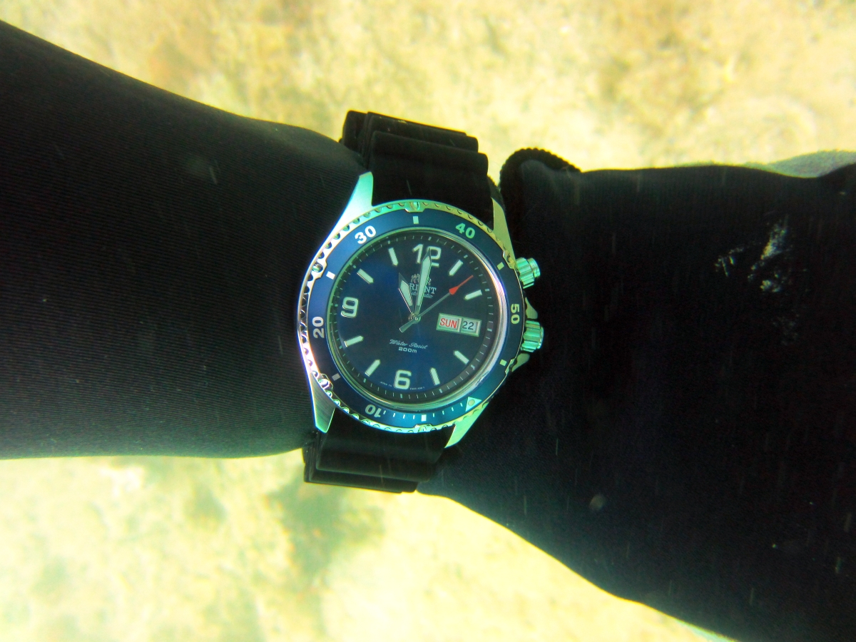 Sunday Dive: 21-04-2013 Rockingham - Orient Mako Orient%20Mako%20Rockingham%2021-04-2013.jpg%20(3)