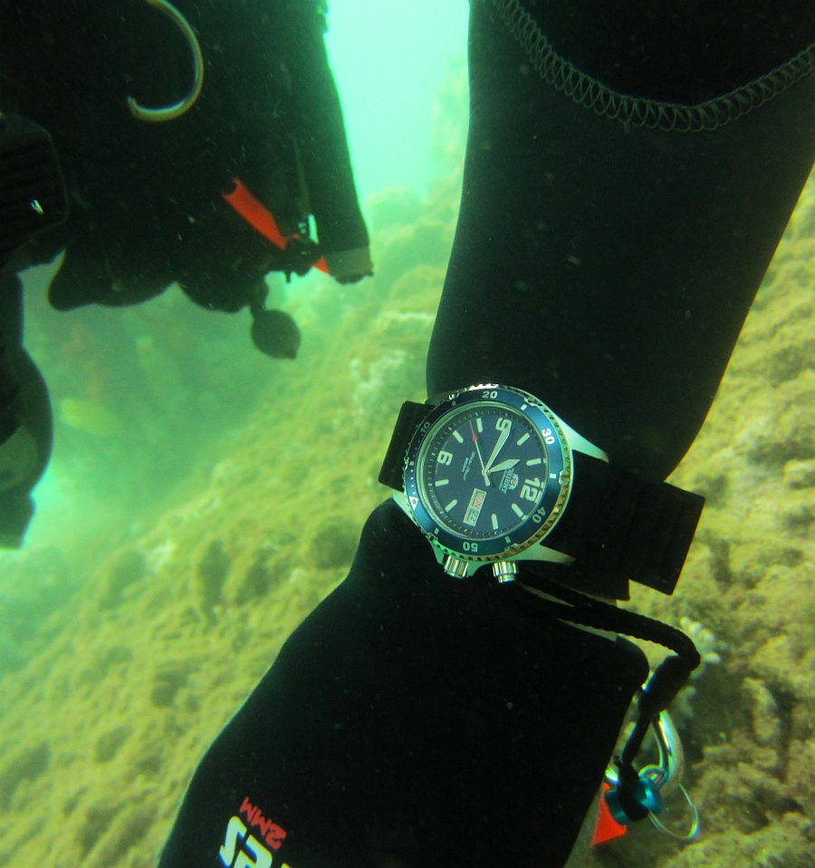 Sunday Dive: 21-04-2013 Rockingham - Orient Mako Orient%20Mako%20Rockingham%2021-04-2013.jpg%20(5)