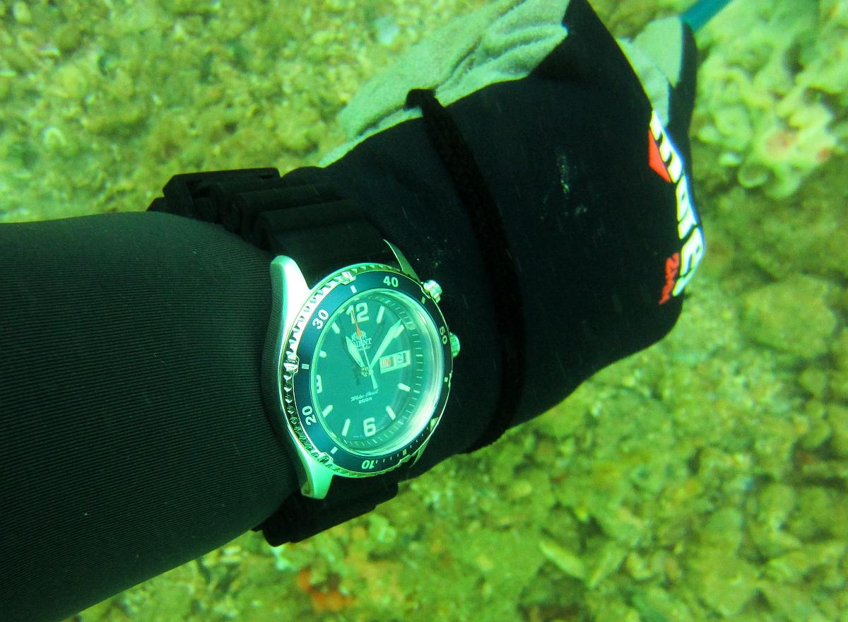 Sunday Dive: 21-04-2013 Rockingham - Orient Mako Orient%20Mako%20Rockingham%2021-04-2013.jpg%20(7)