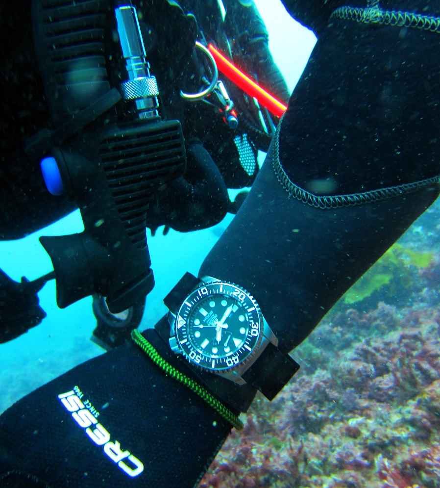 Sunday Dive: 05-05-2013 Roes Reef - OS300 Orient%20OS300%20Roes%20Reef%205-5-1013%201
