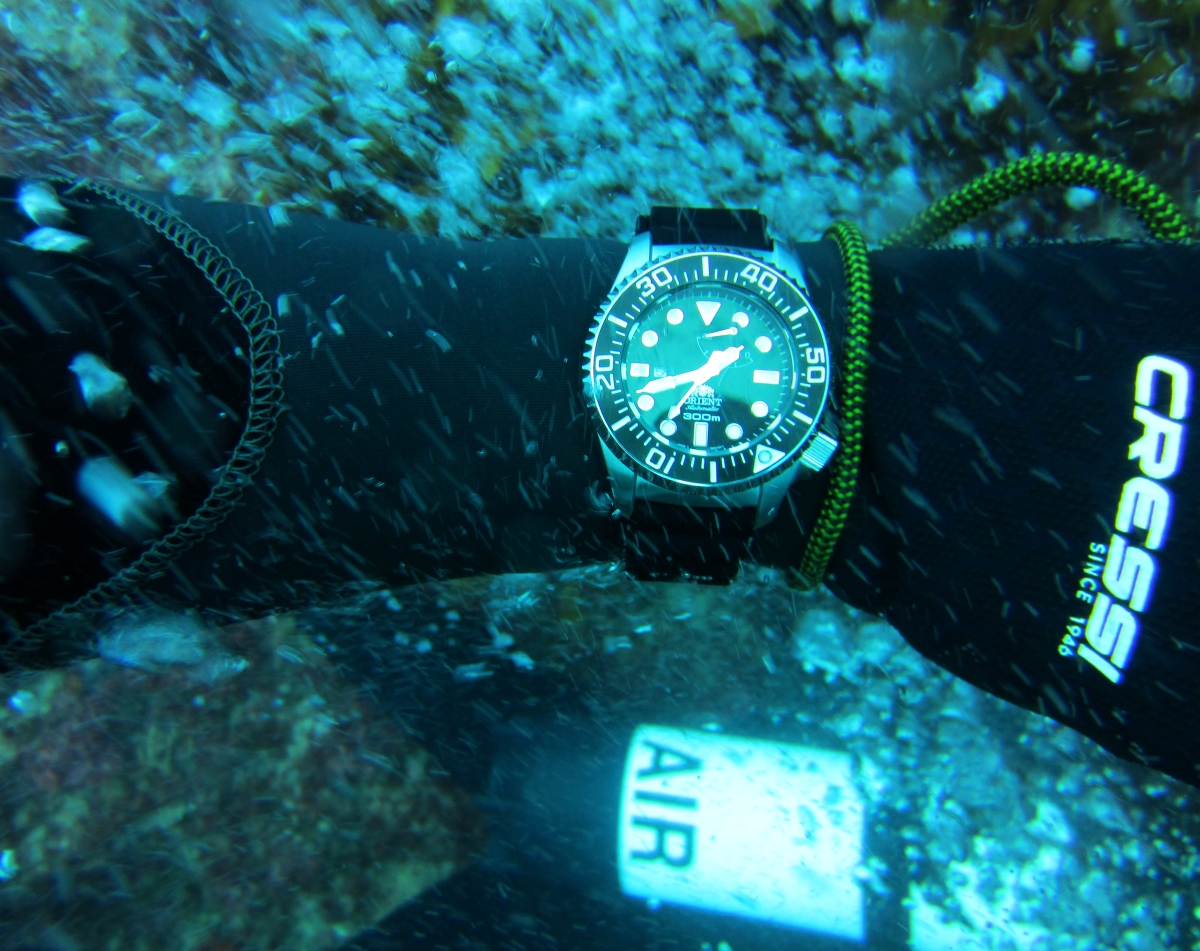 Sunday Dive: 05-05-2013 Roes Reef - OS300 Orient%20OS300%20Roes%20Reef%205-5-1013%202