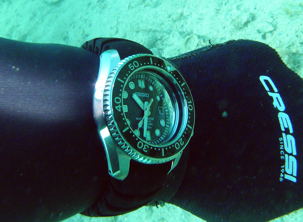 Some dive pics from a site at day and then night - Seiko SBDX001 Seiko%20SBDX001%20Robb%27s%2001-06-2013%201