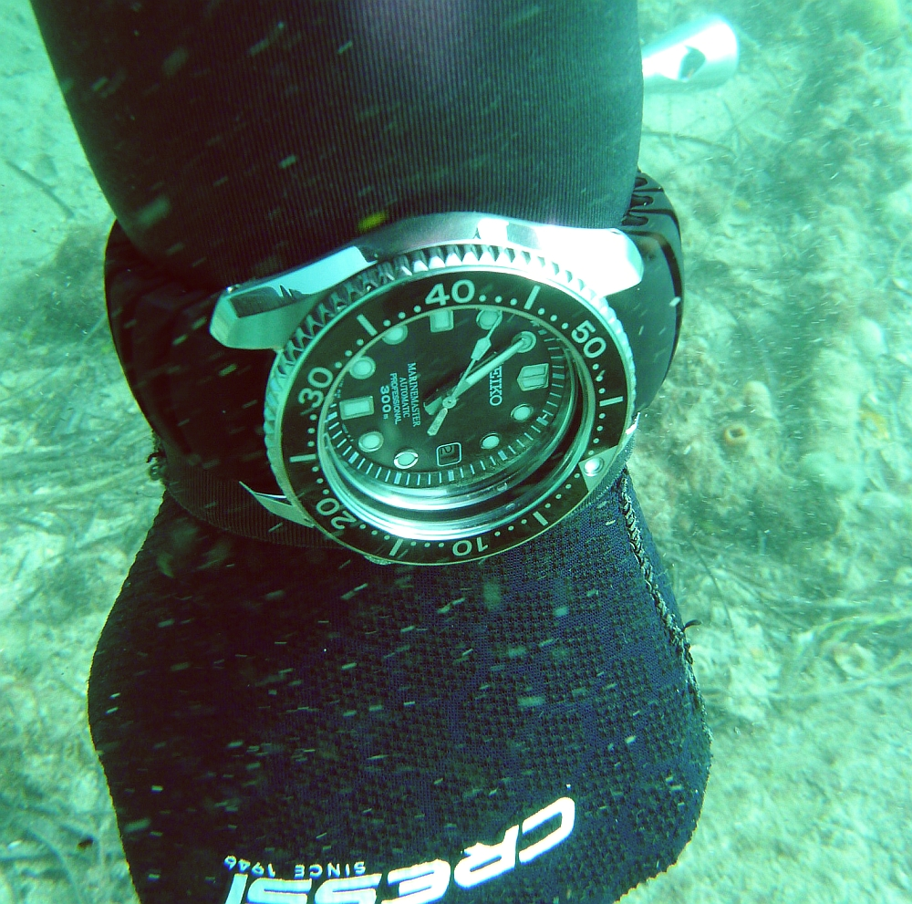 Some dive pics from a site at day and then night - Seiko SBDX001 Seiko%20SBDX001%20Robb%27s%2001-06-2013%202