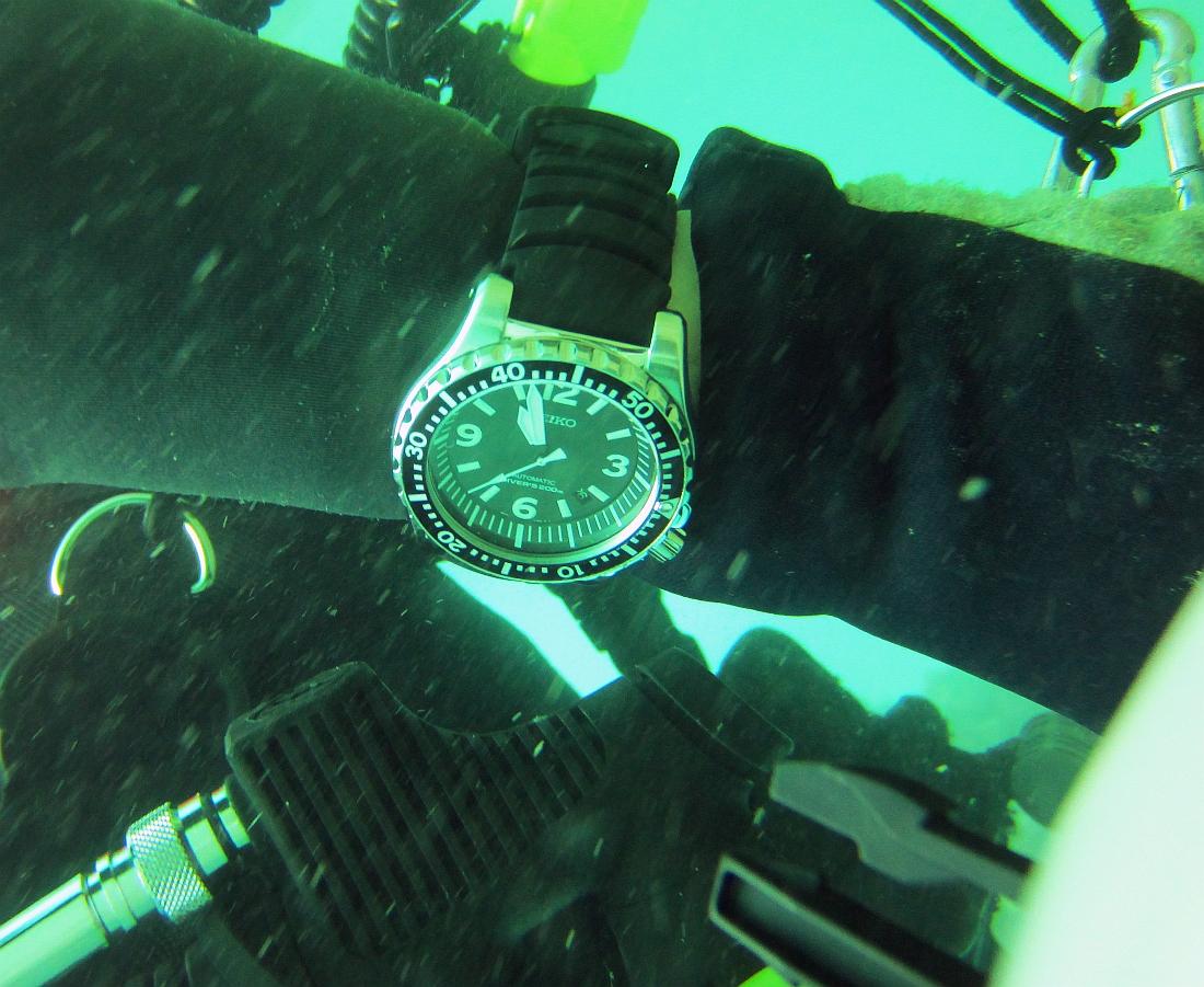 Sunday Dive: 14-04-2013 Coogee - Seiko SRP043 Seiko%20SRP043%20Coogee%2014-04-2013%201%20(4)