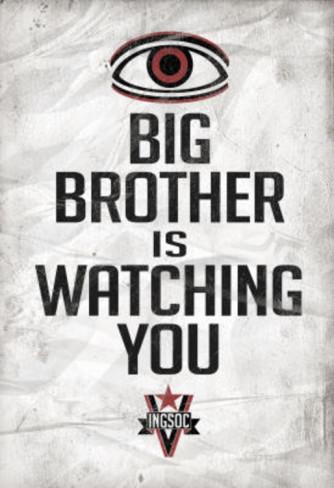 Leitfaden zur Anonymität im Internet Big-brother-is-watching-you-1984-ingsoc-political-poster
