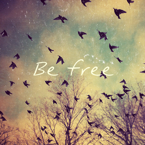 Encontré esto en internet :3 Be-be-free-bird-free-Favim.com-591483