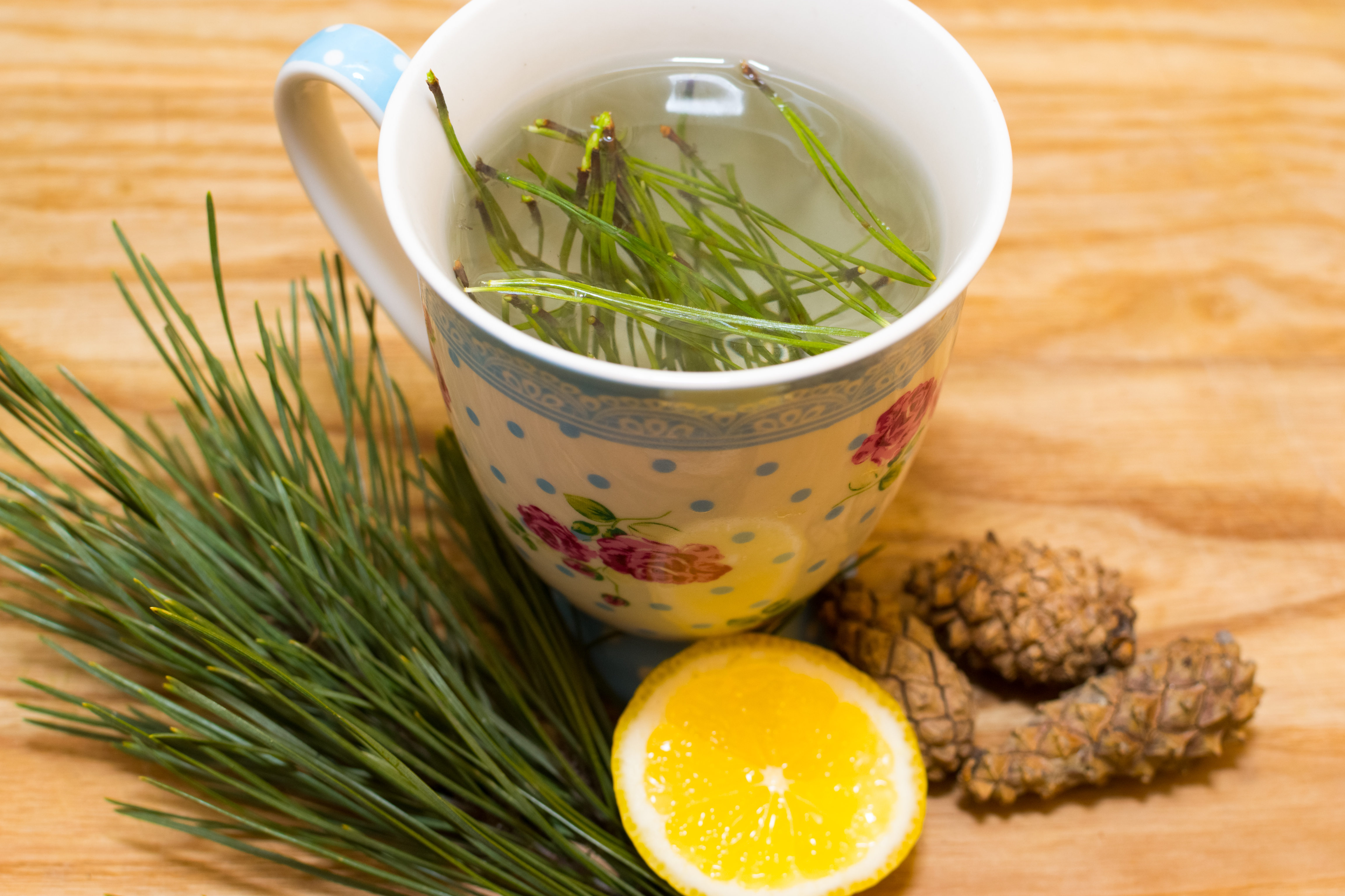 Хвойный чай Make-Pine-Needle-Tea-Final