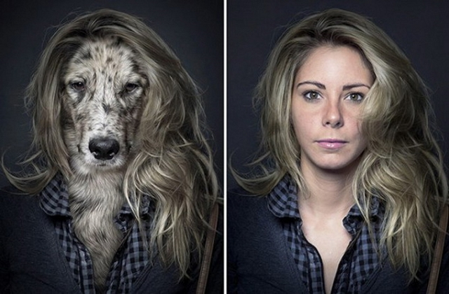 Humour ressemblance - Page 2 Chiens-maitre-ressemblance-7