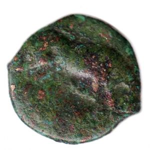 AE 19 de Arpi, Apulia 14212026
