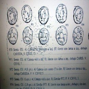 Semis de Carisa 253835667