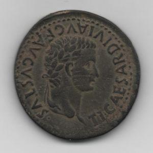 romana con buey 273691175