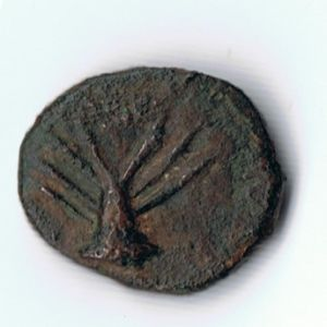 Moneda fenopúnica 322735721