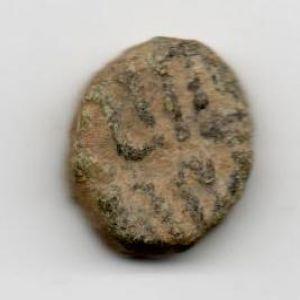 Felus Frochoso II-c 368855240