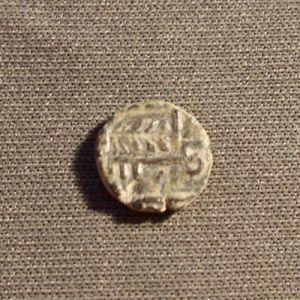 Felus Frochoso VI-c 393340744