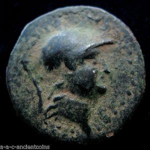 AE 18 de Soloi, Cilicia 396699399