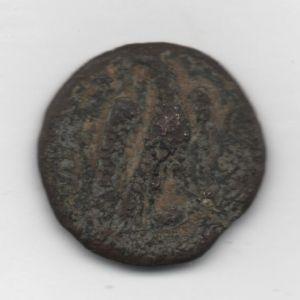 romana pequeña 403547712
