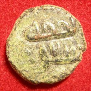 felus frochoso XI-a (nafaqa) 452125973