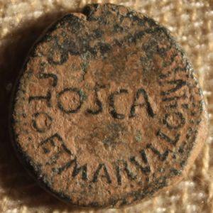 Semis Hispanorromano de OSCA bajo Augusto 45568612