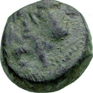 AE 20 seleucida de Antioco VIII Grifo 74999496