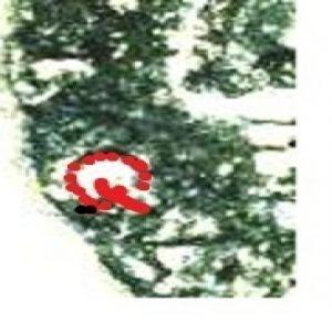 as de cástulo - Página 2 875130891
