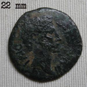 Semis Hispanorromano de ILERDA bajo Augusto 889207496
