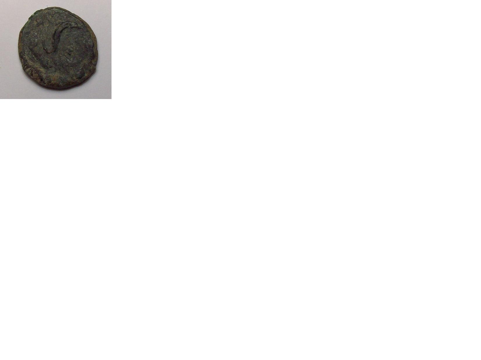 Semis de Carteía 183093222