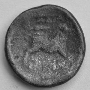 Moneda rara con cerdo 231734154