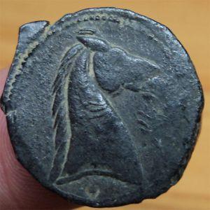 Varios AE Cartagineses 563655837