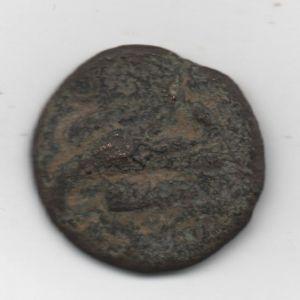 romana pequeña 68169168