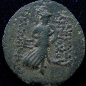 AE 18 seleucida de Antioco IX Kyzikenos 861954366
